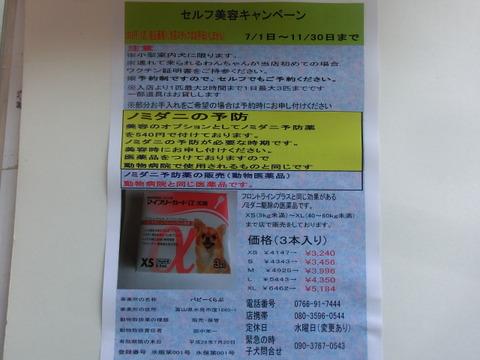 CIMG3021.JPG